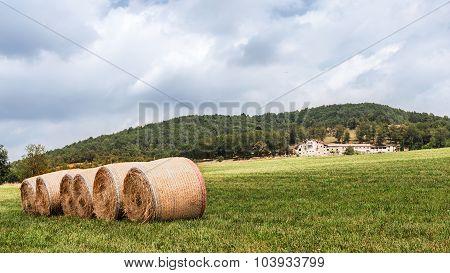 Agricultural Granje