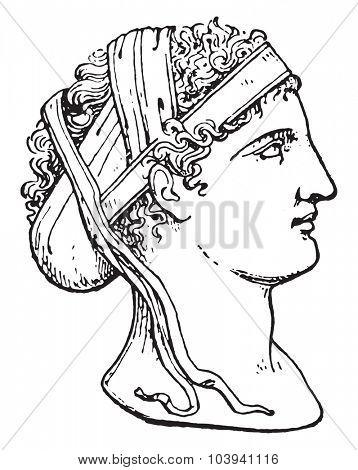 Greek hairstyle, vintage engraved illustration.