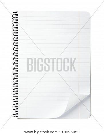 Documento en blanco de la oficina de cuaderno con rizo