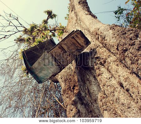 Mailbox, Tree Trunk, Mail Box