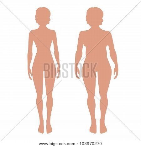 Slender and full female figures.eps
