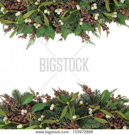 Mistletoe and winter flora background border with  ivy, blue spruce and cedar cypress   leaves with pine cones over white.