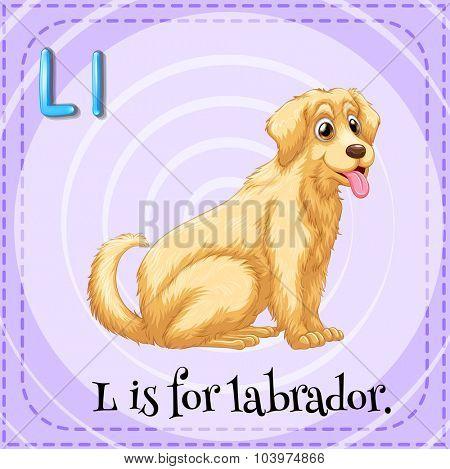 Alphabet L is for labrador illustration