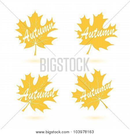 Set Of Autumn Maple Leaves