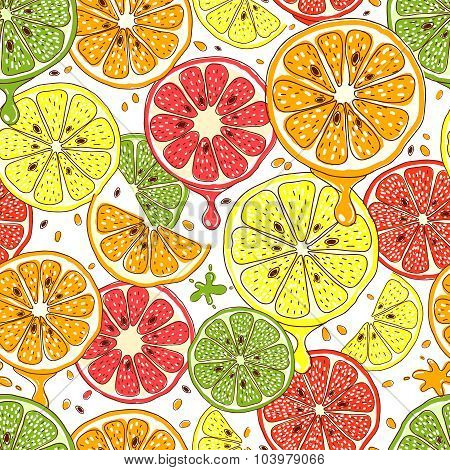 Citrus fruits vector seamless background