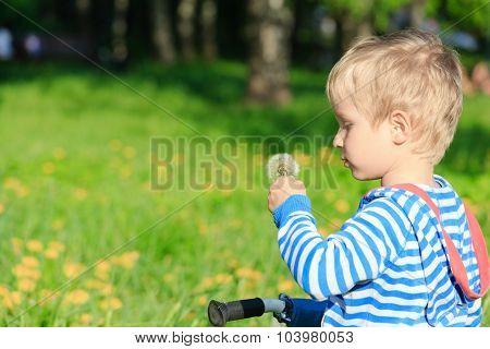 Boy blowing dandelion on summer day