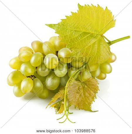Cluster white grapes with leaf. Isolated on white background. Illustration