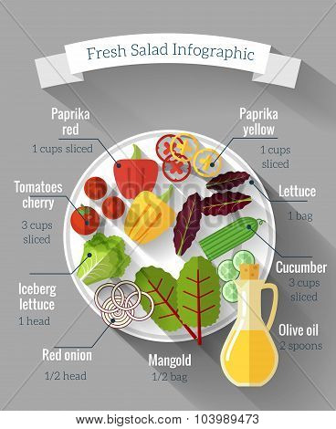 Salad cooking infographics