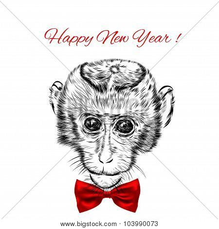 Sketch monkey face with red bow. Hand drawn doodle vector illustration.