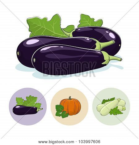 Icons Eggplant, Pumpkin, Zucchini