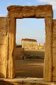 foto of euphrat  - view threw historic window at ancient palmyra in syria - JPG