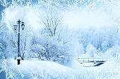 Winter background, landscape. Winter trees in wonderland. Winter scene. Christmas, New Year backgrou poster