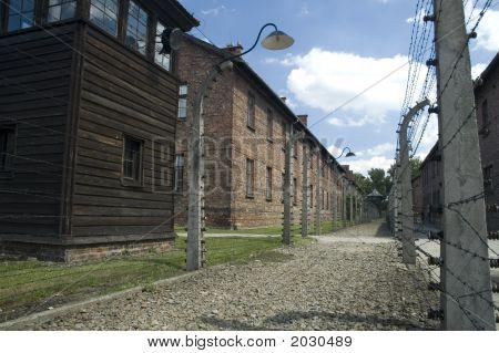 Auschwitz - Street