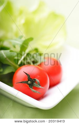 modern plate with lettuce,rocca and tomatos, room for text