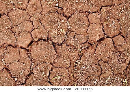 Op droge grond scheuren