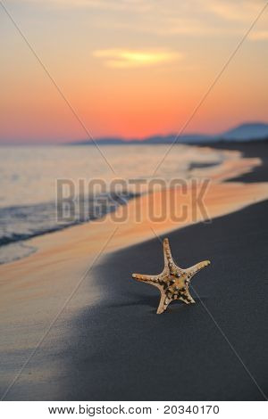 summer beach sunset with star on beach representing freedom freshnes and travel concept