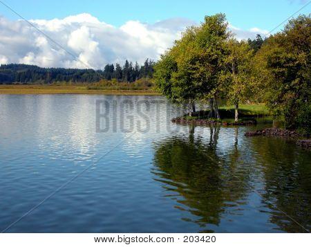 Calm Day At The Lake