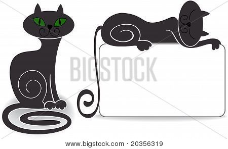 Set Cat