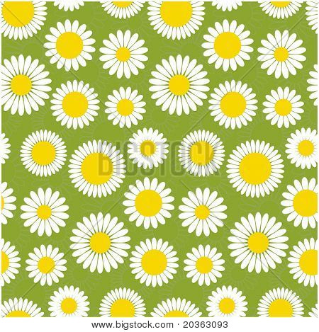 Simple seamless daisy background