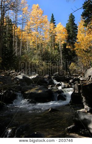 West Fork Clear Creek Gunshot Rapid In Fall