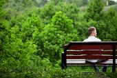 picture of single man  - The young man sits one on a bench against green trees - JPG