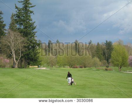 Single Golfer441