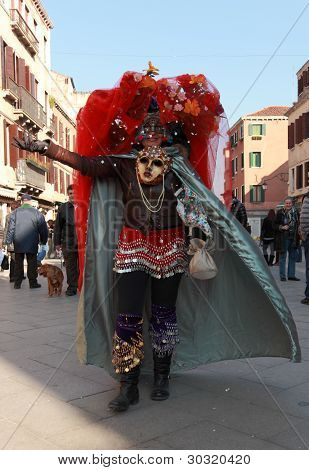 Funny Disguised Woman