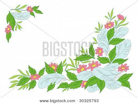 Leaves, flowers and feathers