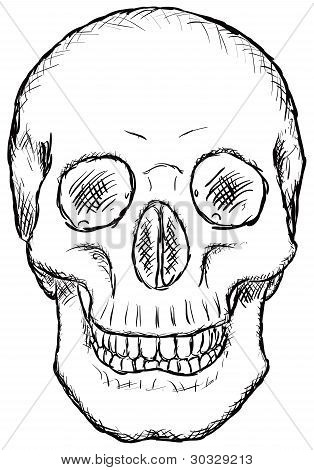 Skull - Rough Vector Drawing