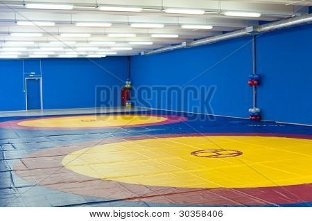 Gym For Wrestling