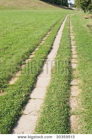 Pathway Through The Grass