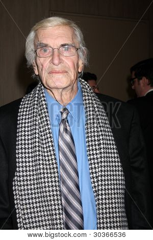 LOS ANGELES - FEB 24:  Martin Landau arrives at the 49th Annual Publicists Guild Awards Luncheon at the Beverly Hilton Hotel on February 24, 2012 in Beverly Hills, CA.