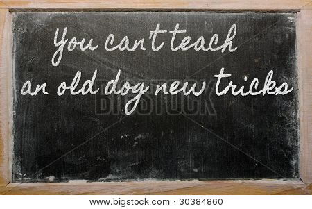 Expression -  You Can't Teach An Old Dog New Tricks - Written On A School Blackboard With Chalk