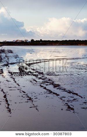 Regiões pantanosas