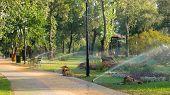 Water Sprinkle System In Summer Park. Sprinkler Showering Lawn. Beautiful Park Landscape Design. poster