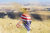 American Flag. Back View Little Patriotic Happy Girl Wrapping In Usa National Flag On Beautiful Land poster