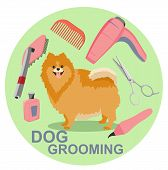 Tools Used In Beauty Salon For Animals. Dog Grooming Salon Poster poster