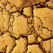 Dried Cracked Mud Suitable As Background And Symbol Of Arid Climate And Climate Change poster
