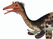 Mononykus Dinosaur Head 3d Illustration - Mononykus Was A Carnivorous Theropod Dinosaur That Lived I poster