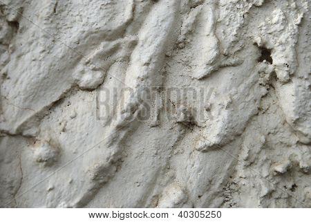 Loam Wall