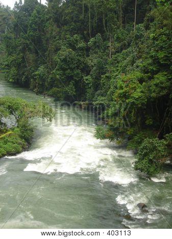 Noisy River