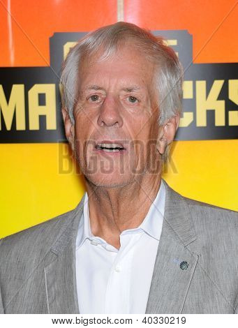 LOS ANGELES - OCT 18:  Michael Apted arrives to