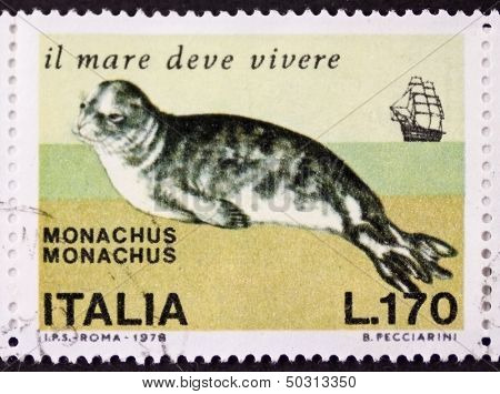 ITALY - CIRCA 1978: a stamp printed in Italy shows image of Mediterranean monk seal (Monachus monachus), one of the most endarged mammals in the world. Italy, circa 1978