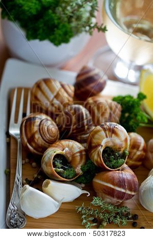 Gourmet, French dishes - Escargots de Bourgogne (snails with herbs butter)