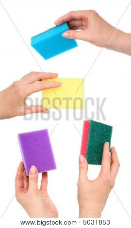 Set Of Female Hands With Kitchen Sponges