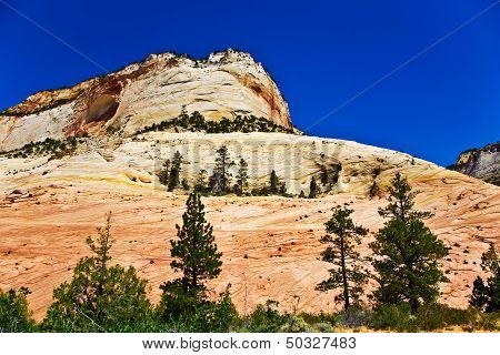 Wonderful Landscape Around Mt. Carmel, Zion National Parc