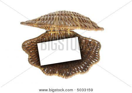 Wickerwork Sea Shell