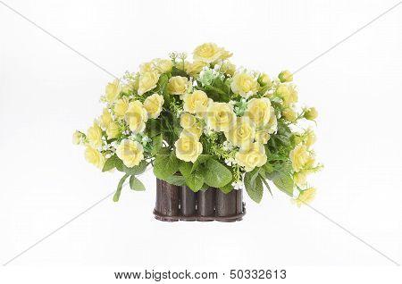 flower plant on pot