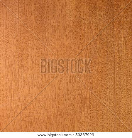 Honduras mahogany (big-leaf mahogany (Swietenia macrophylla),) wood texture. Sought after wood for guitar making. Sharp to the corners.