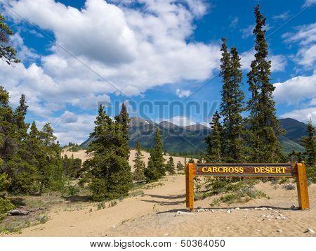 Carcross Desert Sand Dunes Yukon Territory Canada